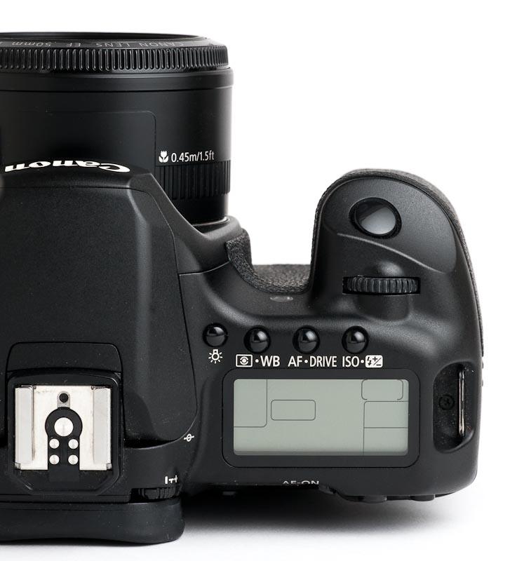 Canon EOS 40D Retrospective • Points in Focus Photography