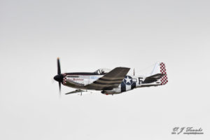 P-51 Mustang Ain't Misbehavin