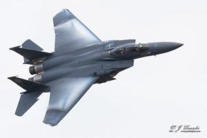 F-15 Wing Vapor