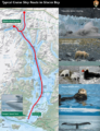 Typical Cruise Ship Routes in Glacier Bay (click to download NPS PDF)