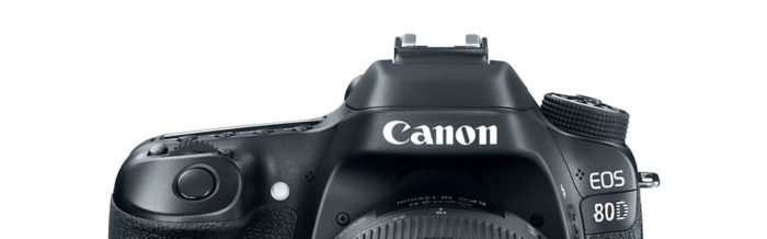 Thoughts on the Canon EOS 80D and EF-S 18-135mm f/3.5-5.6 IS USM lede