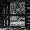 Stockcar Ruins